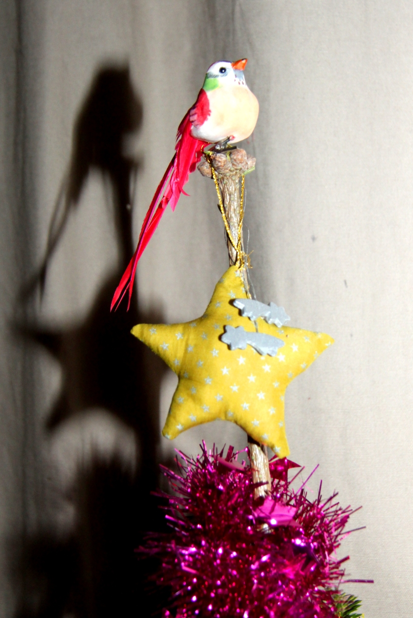sapin oiseau