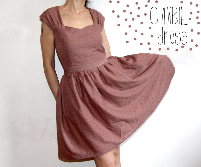 cambie dress 1